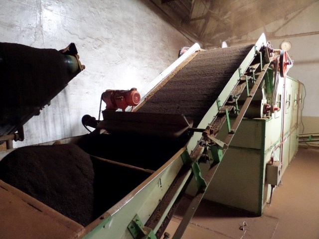 How The Tea Is Manufactured - Boiler Fired Drying Machine