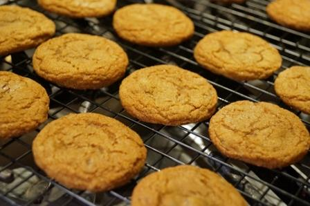 Ginger Organic Tea Aroma - Reminds Us of Baking Ginger Snap Cookies At Home